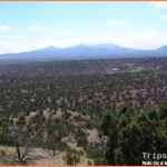 Albuquerque New Mexico Travel Guide_15.jpg