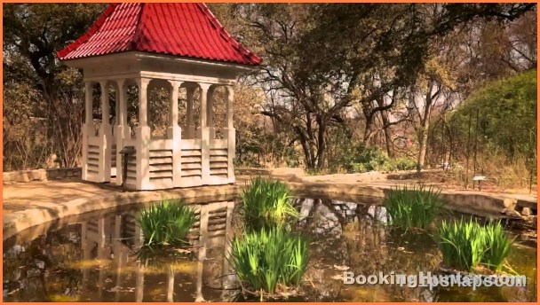 Austin Texas Travel Guide_8.jpg