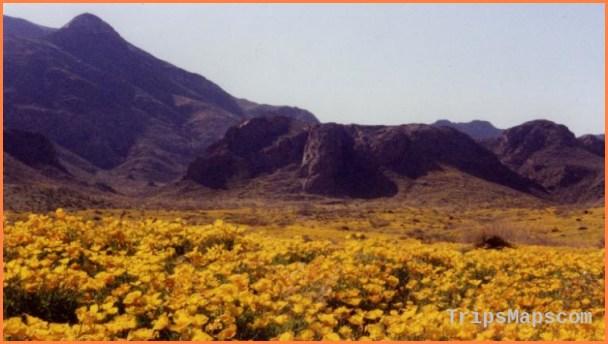 El Paso Texas Travel Guide_11.jpg