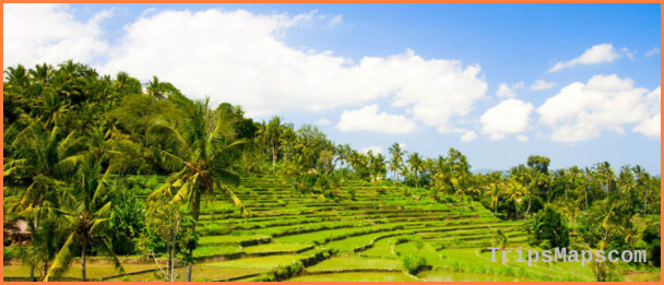 Indonesia Travel Guide_4.jpg