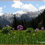 Kyrgyzstan Travel Guide_4.jpg