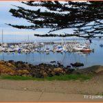 Monterey Travel Guide_12.jpg