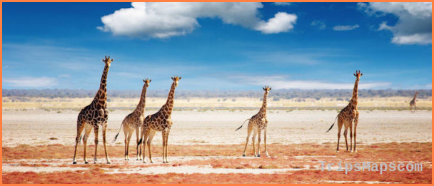 Namibia Travel Guide_1.jpg
