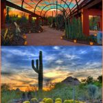 Phoenix Arizona Travel Guide_3.jpg