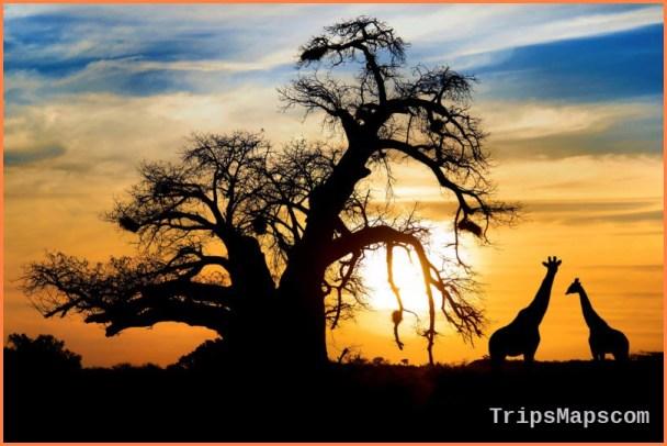 South Africa Travel Guide_2.jpg