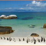 South Africa Travel Guide_4.jpg