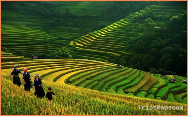 Vietnam Travel Guide_5.jpg