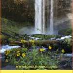 Great Things to do in Government Camp, Oregon