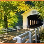 Top-Rated Tourist Attractions in Portland, Oregon