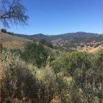Las Virgenes View Trail - California   AllTrails