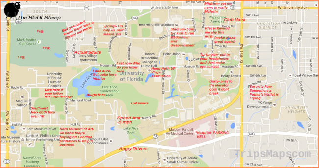 A Judgmental Map of Gainesville, Florida