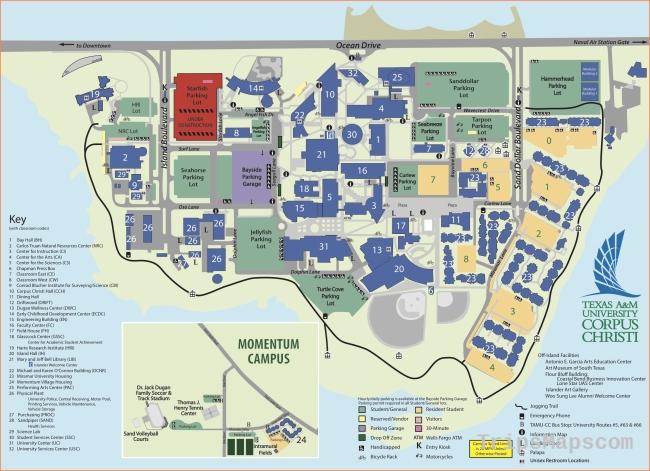 Educational Administration, MS Texas A&M University Corpus Christi