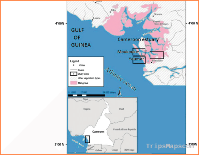 Map showing the sampling stations at Douala-Edea reserve in Cameroon