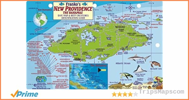 New Providence Bahamas Dive Map & Reef Creatures Guide Franko Maps