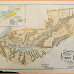 New topographical map of Forest Park, Springfield, Mass