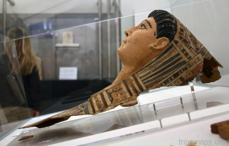 mummies from ancient egypt on vienna 1