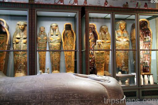 mummies from ancient egypt on vienna 2